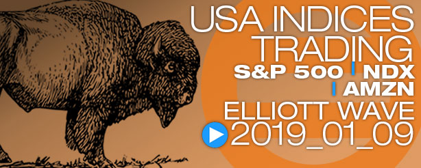 SP500 Elliott Wave 9 January 2019