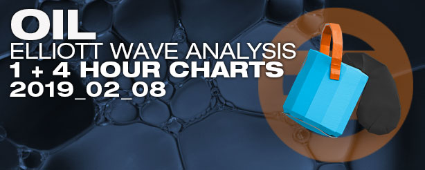 Elliott Wave Crude Oil Futures Options CFDs 8 February 2019