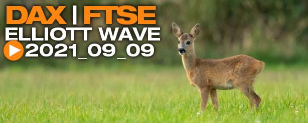 DAX 30 Elliott Wave Analysis, 9 Sept.